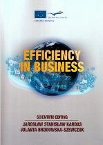 2013_efficiency_in_business